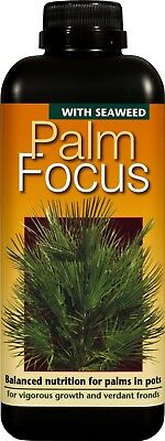 Plant Food Feed - Seaweed - Palm Focus Concentrated Liquid Fertiliser 1 Litre