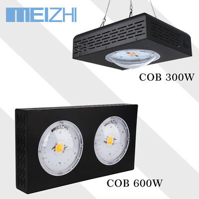 MEIZHI CREE COB CXA3070 300W 600W LED Grow Light  Innen Anlage Full Spectrum
