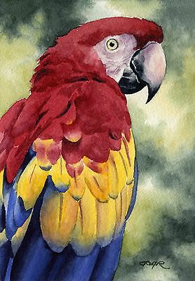 SCARLET MACAW Watercolor Painting 8 x 10 ART Print Signed by Artist DJ Rogers