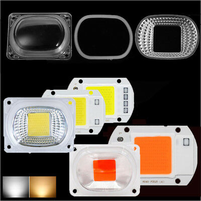 LED COB White Chip+Lens Reflector 50W 30W 20W 110V/220 LED FloodLight Lamp