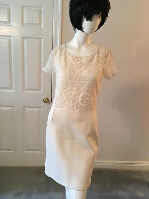 c03e238454f Womens Fitted Sheath Ivory Dress with Lace Bodice by Gianni Bini