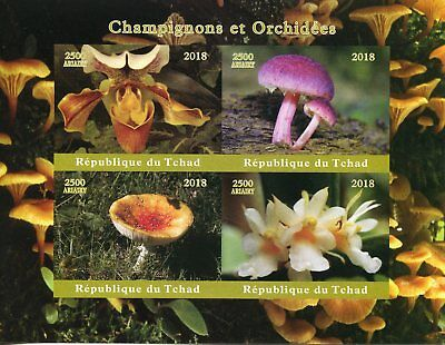 Chad 2018 MNH Mushrooms & Orchids 4v IMPF M/S Champignons Flowers Fungi Stamps