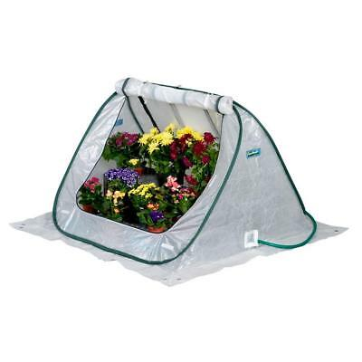 SeedHouse 4 ft. x 4 ft. Pop-Up Greenhouse Gro-Tec cover Home Outdoor Plant