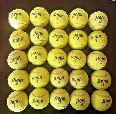 25 Tennis Balls Used, Dog toys.CAN POST Via COURIER Pick up welcome - Petersham