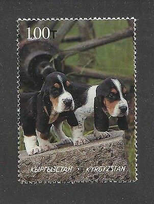 Dog Photo Head Study Portrait Postage Stamp BASSET HOUND Puppy Kyrgyzstan MNH