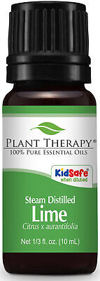 Plant Therapy Lime Steam Distilled Essential Oil 100% Pure