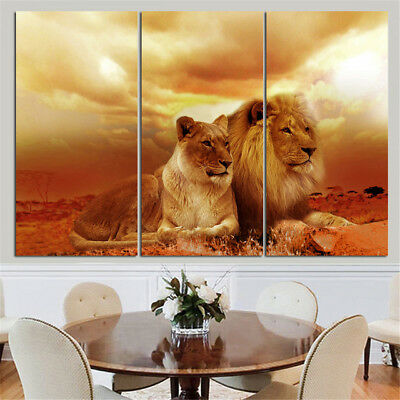 King Of The Jungle 3 Panel Canvas Wall Art Modular Decorative  Brand New