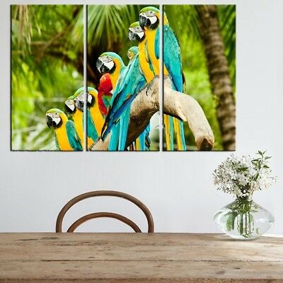 Colorful Bird  3 PANEL CANVAS WALL ART MODULAR DECORATIVE  BRAND NEW