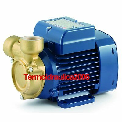 Electric Peripheral Water Pump PQ 81-Bs 0,7Hp Brass body impeller 400V Pedrollo
