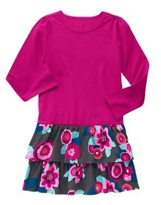 NWT Gymboree Mix N Match Girls or Toddler Long sleeve ruffled Floral Dress
