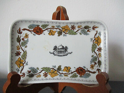 Circa 1910 Souvenir Greenbrier Sulphur Springs West Virginia Buffalo China *