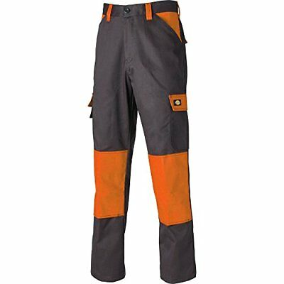 Pantalon Dickies Everyday, multicolore, ED24/7R GYO 38