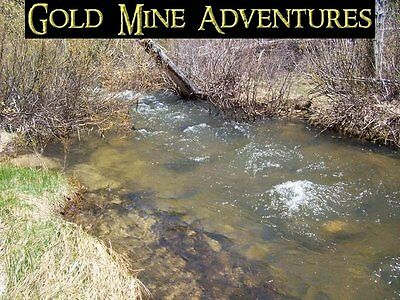 """IDAHO MINERAL LEASE, Placer Claim, Mining Claim, Lode Claim, """"Ophir Gold"""""""