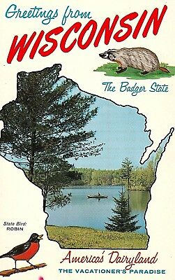 """Vintage 1950's """"GREETINGS from WISCONSIN ~The BADGER STATE Chrome Postcard"""