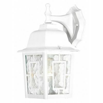 Banyan 1 Light 12 in. Outdoor Wall Clear Water Glass White NUVO 60-4921
