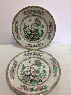 """VINTAGE LORD NELSON WARE INDIAN TREE PATTERN - 2 x 8"""" PLATES"""