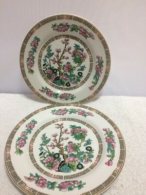 "LORD NELSON WARE 'INDIAN TREE' 9"" LUNCHEON PLATE x 2"