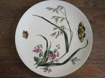 ANTIQUE MINTONS HAND PAINTED BOTANICAL PLATE BUTTERFLY FLOWERS (approx 24 cm).