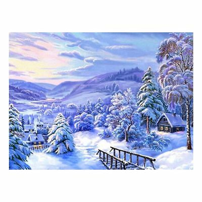 Snowscape DIY 5D Full Diamond Painting Embroidery Cross Home Decor Craft Q5D8
