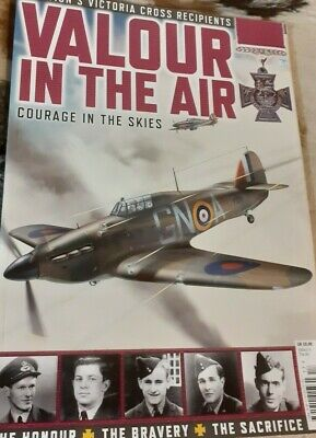 Valour in the Air Victories Honours Sacrifices Made for freedom New Book planes