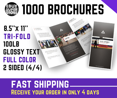 1000 Tri-Fold BROCHURE FULL COLOR 8 1/2 x 11 100lb Glossy Text  FAST SHIPPING