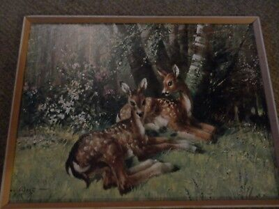 Vintage picture with dear classically kitsch and retro 1960/70's in frame