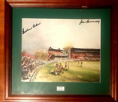 Hawthorn Framed Painting w/Signatures & Premiership DVDs