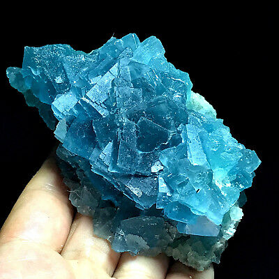 313.5gNewly discovered -100% Natural Rare Cube Deep Blue Fluorite Cluster-China