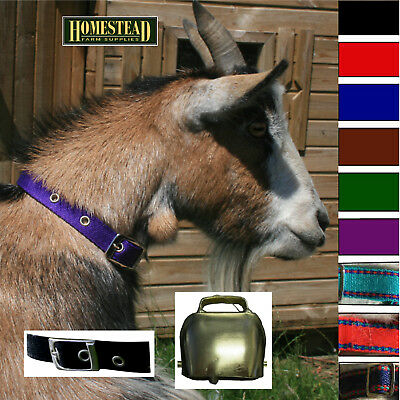 Traditional Goat Collar Buckle and Goat Bell - 9 Colours - Small Medium Large