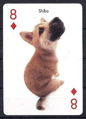 One Single Dog Optical Art Photo Playing Card JAPANESE SHIBA INU Puppy Artlist