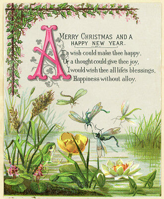 """Dragonfly Frog Water Lily Glitter Accent Antique Victorian Christmas Card 5x4"""""""
