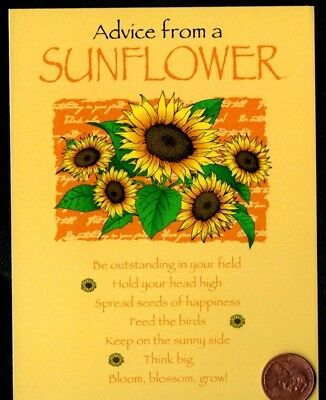 Advice from a Sunflower Yellow Leaves - Small Blank Note Greeting Card - NEW