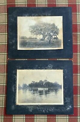 2 KISSIMMEE FLORIDA Cabinet Photos from a Charleston, WV Estate sale Late 1890s