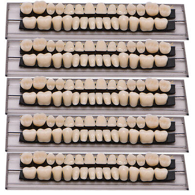 140pc 5Set Denture Acrylic Resin Full Set Teeth Upper Lower Shade 23#A2 Dental