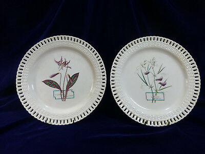 "Antique ""Mintons"" Plates (2) With Pierced Edges And Botanical Images"
