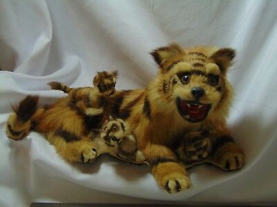 Vintage 20th Century Miniature Taxidermy Andean Mountain Cat & Kittens