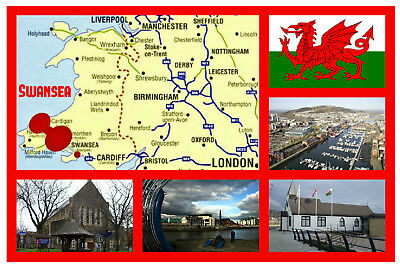 Swansea, South Wales - Souvenir Novelty Fridge Magnet - Sights / Flag / Gifts