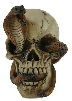 Collectible SKULL WITH COBRA Handpainted Resin Statue SNAKES