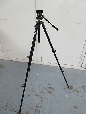 Manfrotto Professional Tripod 190B/EF10 with Model #200 Video Head(A8)