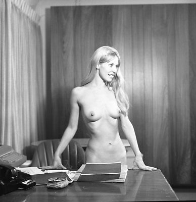 1960s Dave Miller Negative, gorgeous nude pin-up girl Andrea Martin, t207320