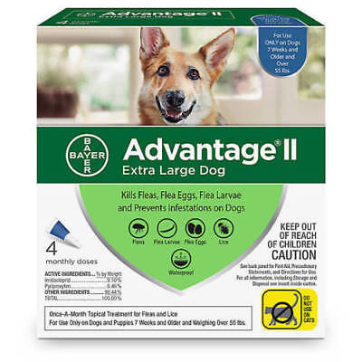 Advantage II for Extra Large Dogs over 55 lbs - 4 Pack - FREE Shipping! New Box!