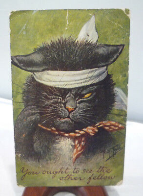 "Signed Arth. Thiele ""You Ought to See the Other Fellow"" Cat with Bandaged Head"