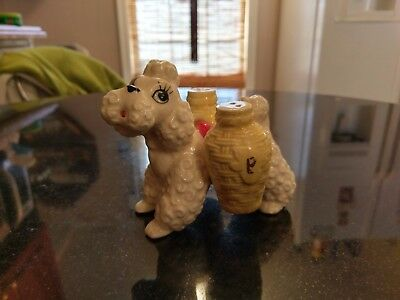 Rare Antique Salt & Pepper Shaker #1