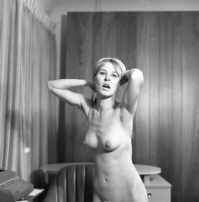 1960s Dave Miller Negative, gorgeous nude pin-up girl Andrea Martin, t207315
