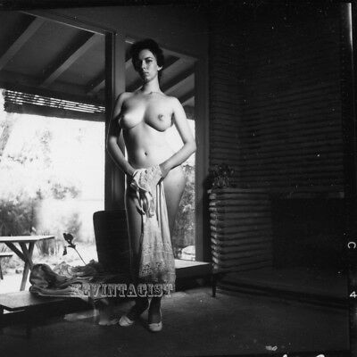 Vintage Nude Photograph  CONTACT SHEET * BUSTY BRUNETTE * NUDE