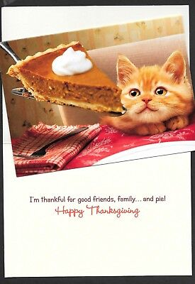 Avanti THANKSGIVING Card   Pumpkin Pie  Kitten