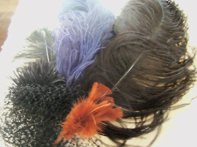 Antique Vintage  Millinery Ostrich Feather Plumes and More