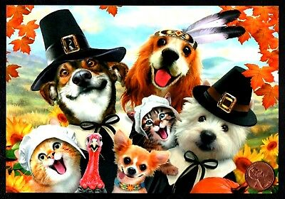 Thanksgiving Selfie Dogs Cats Kittens Turkey Pilgrims Hats -  Greeting Card