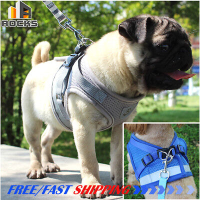 Dog Cat Walking Harness and Lead Adjustable Reflective Strap Vest For Small Pet