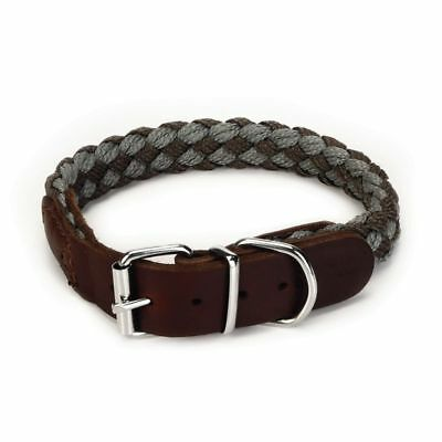 Beeztees Collar de Perro Modelo Korda Nylon Color Marrón 20 mm 33-39 cm 745950